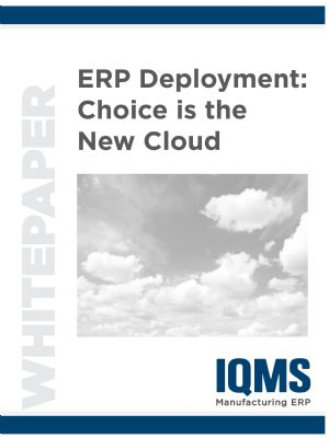 ERP Deployment: Choice is the New Cloud